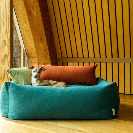 CHARLEY CHAU DOG MODEL COMPETITION image