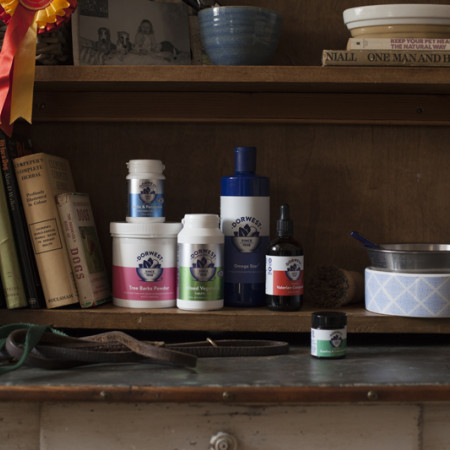 WE ASK DORWEST, THE EXPERTS IN HERBAL PET CARE, WHAT ARE THE BENEFITS OF USING HERBAL PRODUCTS?  image