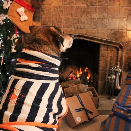 PAWSOME GIFTS FROM HARBOUR HOUNDS  image