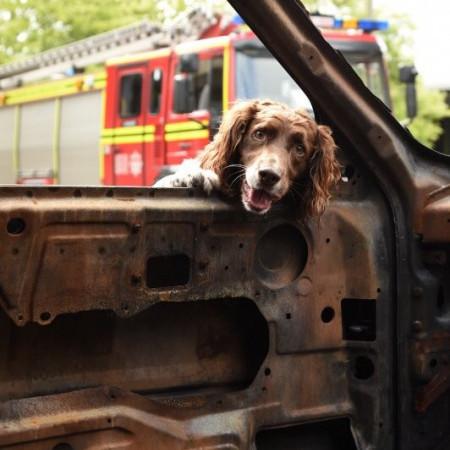 Hampshire Fire and Rescue