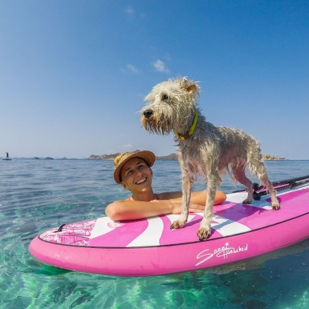 SUP WITH PUP image