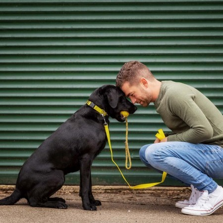 HOW CAN WE BE MORE ENVIRONMENTALLY FRIENDLY AS DOG OWNERS? image