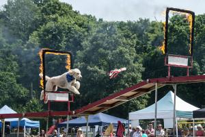 Rockwood dog display team dogstival